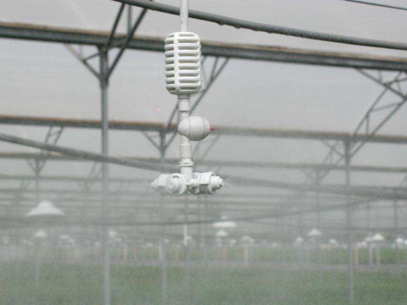 Vòi tưới phun sương Coolnet 4 miệng phun