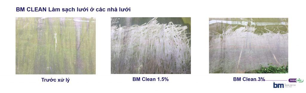 BM Clean làm sạch lưới nhà lưới