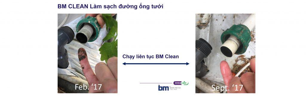 BM Clean làm sạch đường ống tưới