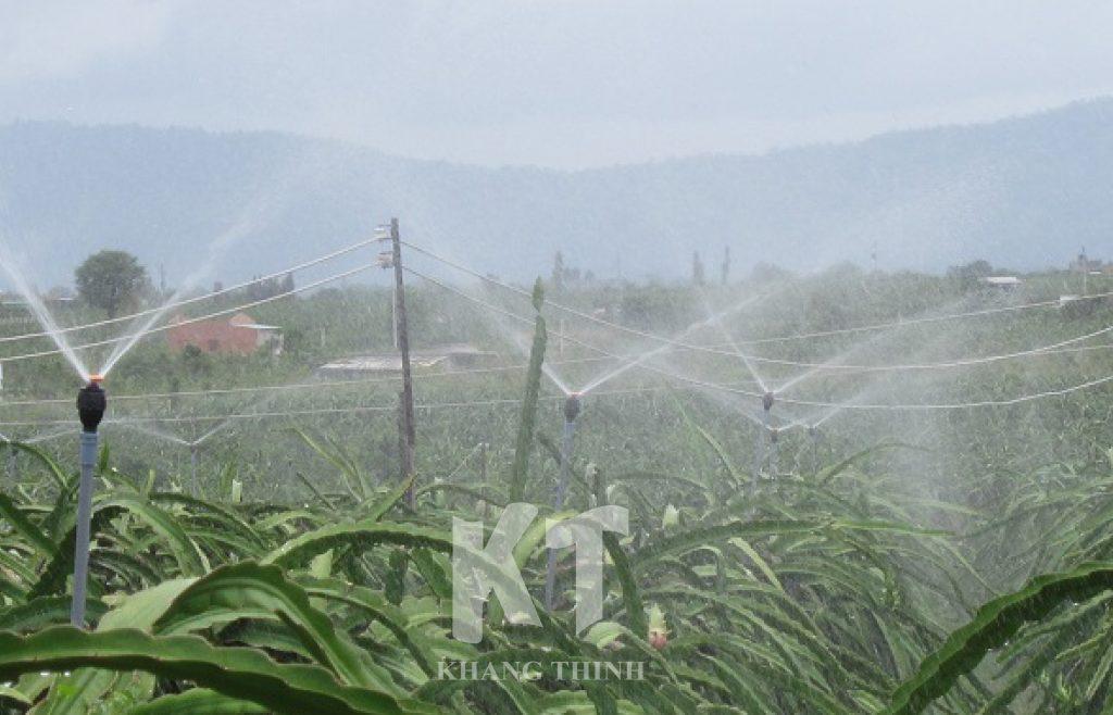 Tưới phun mưa Meganet - Netafim